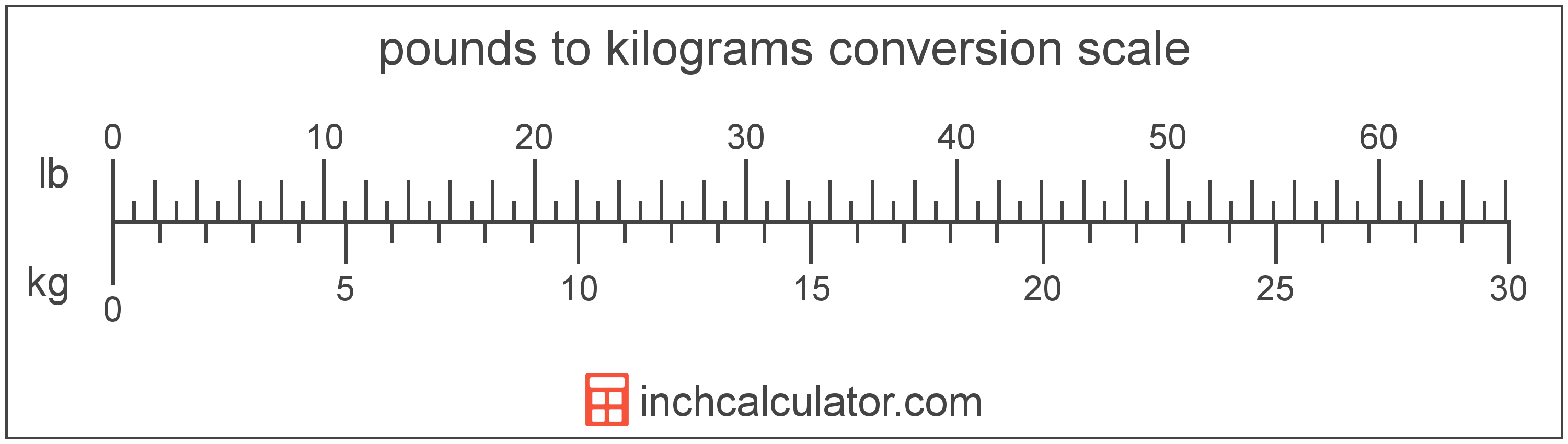 conversion scale showing kilograms and equivalent pounds weight values