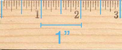 Inch markings on a ruler are the longest ticks. There are usually 12 inches on a ruler.