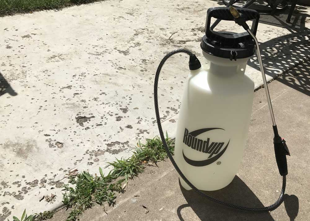 You can remove weeds from a patio using chemical sprays
