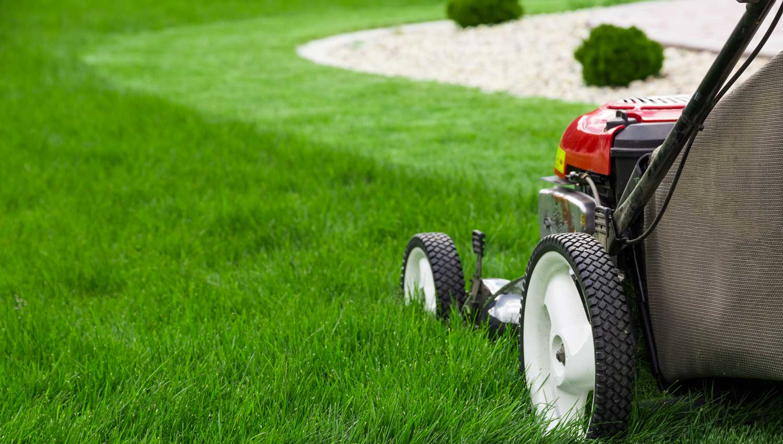 professional landscaper mowing a lawn