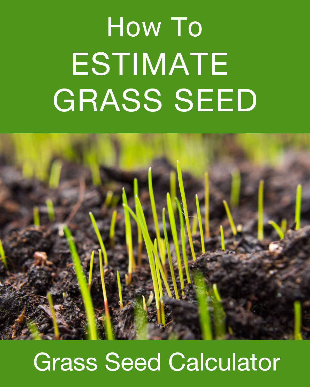 grass seed calculator