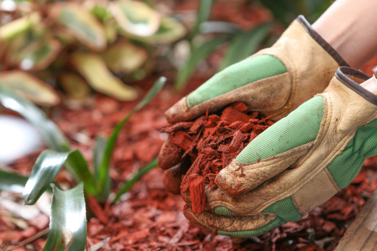 Find how much mulch you need for a landscaping project