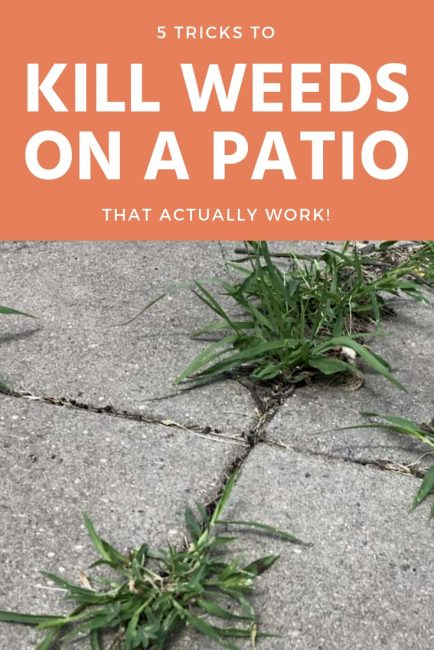 5 Tricks to Get Rid of Weeds on Your Patio that Actually