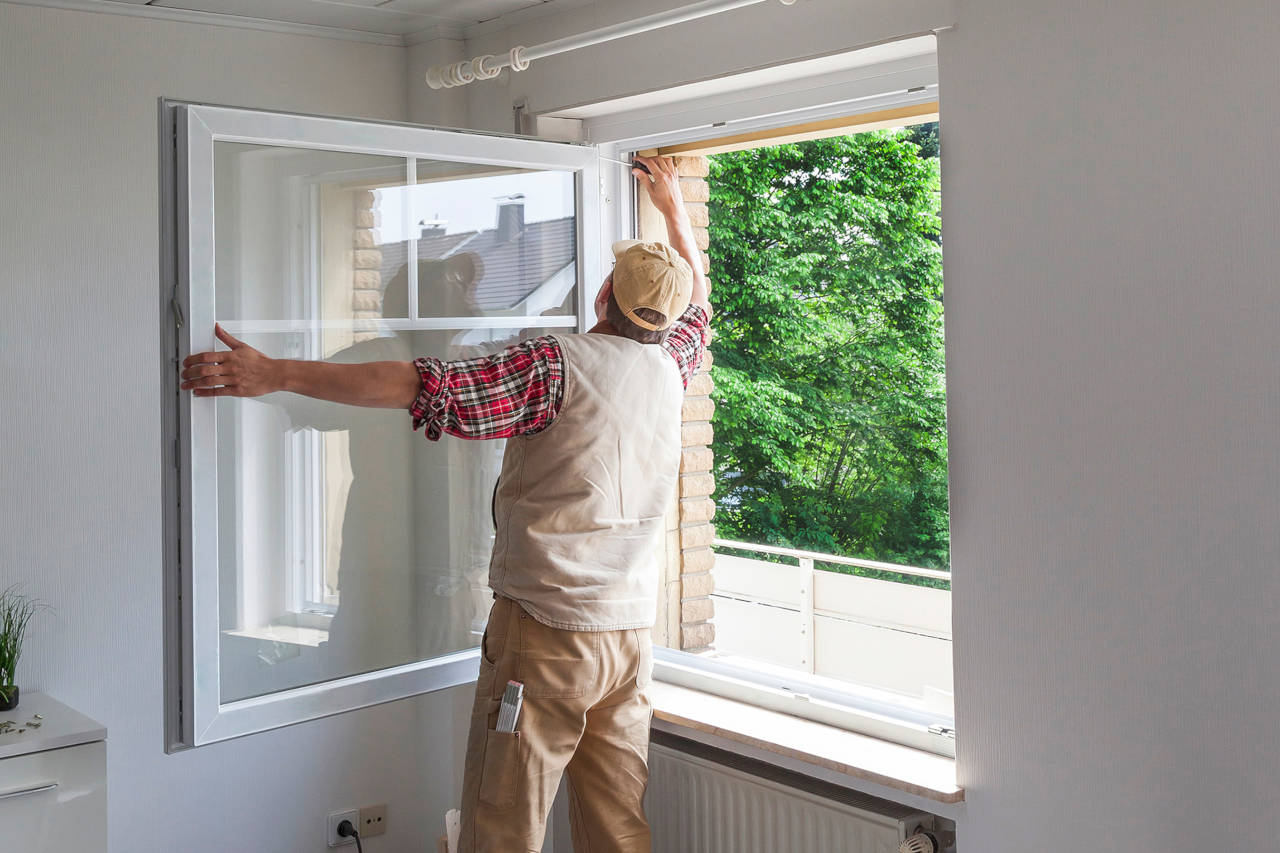 cost to replace windows - 2019 average prices